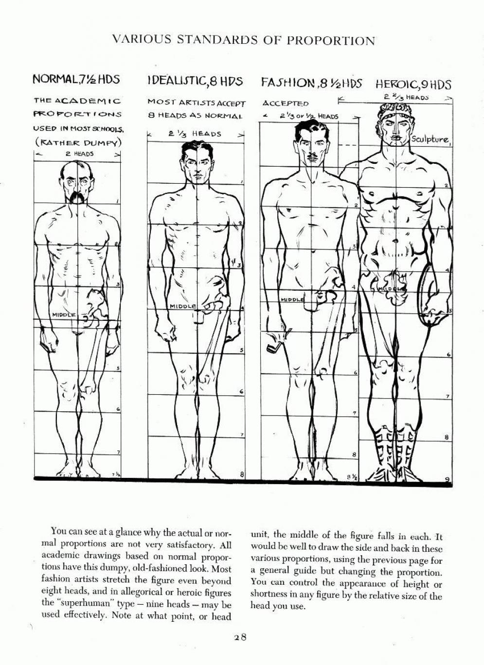 014 | Anatomy References for Artists