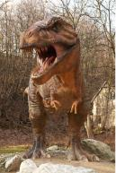 Image from Tyrannosaurus Rex Modeling Photo References - 250831thyranosaurus_0112.jpg