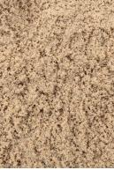 Image from  Free Sand textures from environment-textures.com - sand0027.jpg