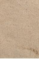Image from  Free Sand textures from environment-textures.com - sand0053.jpg