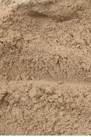 Image from  Free Sand textures from environment-textures.com - sand0071.jpg