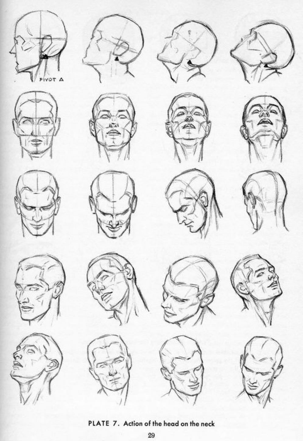 025 anatomy references for artists